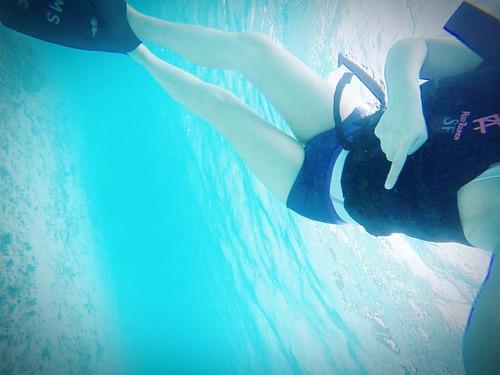 快看!下面有______!!! Look! There is a _____!!!  #沖繩 #渡嘉敷島 #久志海灘 #渡嘉志久ビーチ #浮潛 #tokashiki #tokashikiisland #japan #sea #snorkeling #undersea #🐢✨