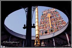 4715 - Thiruporur Kandasamy Temple series 07 (chandrasekaran a 30 lakhs views Thanks to all) Tags: india heritage buildings chennai murugan gopurams dwajastambam canon60d thiruporur kandasamytemple templesarchitecturesscuptures saivaism tamronaf18270mmpzd