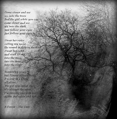 See Into the Dark (virtually_supine) Tags: blackandwhite lyrics artistic creative textures layers hypothetical digitalmanipulation vividimagination photographicmanipulation awardtree aforestbythecure pse9 photoshopelelments9