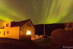 Northern lights (Edda Sigurds) Tags: iceland europe aurora sland auroraborealis borealis vestfirir westfjords norurljs
