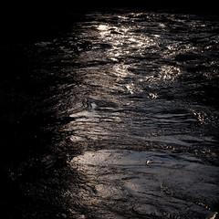 Novembre Light (zeh.hah.es.) Tags: november autumn light water schweiz switzerland licht wasser novembre zurich herbst zrich limmat zehhahes