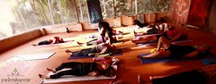 "padmakarma-yoga-kovalam • <a style=""font-size:0.8em;"" href=""http://www.flickr.com/photos/129392325@N08/15585536957/"" target=""_blank"">View on Flickr</a>"