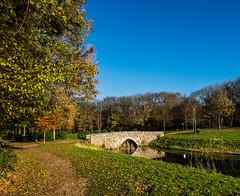 An old bridge (Wouter de Bruijn) Tags: bridge autumn trees fall water netherlands colors grass leaves forest roman nederland bluesky zeeland fujifilm walcheren westhove xt1 fujinonxf14mmf28r mantelingen