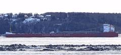 Thunder Bay (Jacques Trempe 2,320K hits - Merci-Thanks) Tags: river bay ship quebec stlawrence stlaurent thunder fleuve caprouge navire