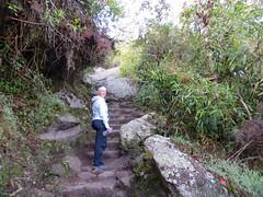 Machu Picchu-32