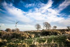 """Ynysddu Wind Turbine • <a style=""""font-size:0.8em;"""" href=""""http://www.flickr.com/photos/32236014@N07/15931547462/"""" target=""""_blank"""">View on Flickr</a>"""