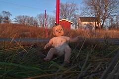 Found? (Delphinidaesy) Tags: norway doll fuji lofoten x10 noorwegen nordland korsnes
