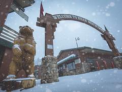 The Gateway to Shred Kingdom