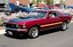 I love Mustangs..... (AceOBase...) Tags: usa ford 1969 car canon vintage photography 60s classiccar vintagecar wheels dreamgarage machine chrome warrior mustang musclecar 1966mustang coolcar mach1 vintageautomobile fordracing poweredbyford 351cleveland worldcars 1969mustangmach1 mustangsunlimited certifiedcarcrazy canonwarrior mustanglust