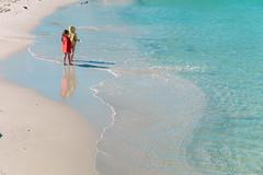 CMJN (Bony_) Tags: mer france beach nice riviera dune ctedazur berge palmtree plage bord palmiers rivage rive frenchriviera promenadedesanglais stationbalnaire stationthermale englishstrip villedeaux
