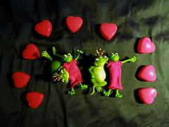True love (The Famous Froggies) Tags: green love true bendable froggies frogprincesses notonourcard flickrbingo3g50