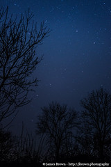 Ursa Major (Great Bear) (J. Brown Photography) Tags: bear trees brown photography james major photo big sony great astrophotography alpha ursa dipper
