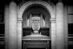 Maclellan Building (Image South Photography) Tags: blackandwhite bw chattanooga eagle nikond70 broadstreet maclellanbuilding