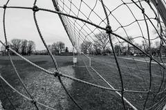 Netting (severalsnakes) Tags: park net football goal pentax soccer fisheye k30 katypark rokinon835