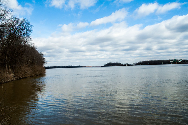 Hovey Lake Fish & Wildlife Area - Ohio River - January 6, 2015