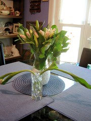 On arrival (miz bee) Tags: tulips lilies bouquet mixture