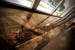 _DSC0979 (fdpdesign) Tags: shop bar vintage design nikon italia industrial liguria renderings varazze autocad d200 legno d800 ferro industriale shopdesign progettazione tabaccherie fdpdesign loacali