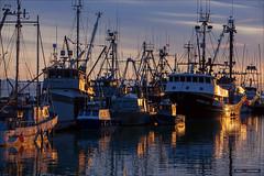 You Can Almost Hear The Fishing Tales (Clayton Perry Photoworks) Tags: sunset canada vancouver reflections boats spring fishing bc richmond steveston stevestonfishingvillage explorebc explorecanada vancitybuzz