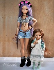 The family is almost together!!! (nekomuchuu63) Tags: doll box 14 opening bjd 16 fairyland luka lishe minifee littlefee
