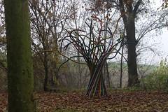 Albero della vita (Marta Montresoro) Tags: autumn italy parco lake tree art home nature leaves fog canon photography rainbow italia colours tubes mantova arcobaleno lungolago plastica concorso