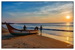 Tiruvottiyur Beach (msankar4) Tags: beach sunrise boat fishermen indianocean sardines sankar raman bayofbengal fisheries fishingharbor kasimedu northchennai tiruvottiyur sankarraman msankar tiruvottiyurbeach