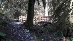 20160331_094944 (ks_bluechip) Tags: creek evans trails preserve sammamish usa2106