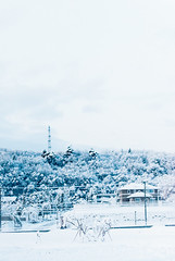 Tohoku, Japan (Spencer Pernikoff) Tags: winter white snow japan digital landscape nikon snowy sendai blizzard tohoku