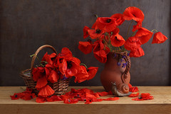 They Bow Out Gracefully (panga_ua) Tags: flowers red june petals basket snail bow poppies figurine earlysummer fieldflowers ceramicjug theybowoutgracefully