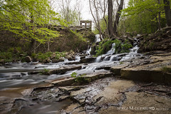 Montseny (Sergi M Guerrero) Tags: naturaleza mountain verde green nature water rio forest canon agua long paisaje exposition bosque 24mm montaa f71 haida 24105 montseny nd30 5dmarkii
