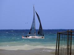 16061701833foce (coundown) Tags: genova mare vento velieri sailingboat ussmasonddg87 ddg87 ussmason mareggiata piloti