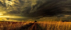 The sunset and the storm (slava_kushvalieva) Tags: storm field sunset sun rays sunrays clouds approach reap countryside landscape nature varbovchets vidin bulgaria