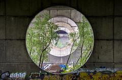 DSC_5797 (kabatskiy) Tags: city bridges cars nature abstracts cats beer