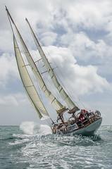 Talisker Mhor (Matchman Devon) Tags: royal dart yacht club classic regatta 2016 talsiker mhor mcgruer