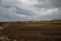 Berserkjahraun 48 (raelala) Tags: 2016 berserkjahraun snaefellsnes snaefellsnespeninsula canon1785mm crater europe europeantravel iceland icelanding2016 lava lavafield photographybyrachelgreene ringroad roadtrip scandinavia thatlalagirl thatlalagirlphotography thatlalagirlcom travel