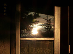 sunset H reflection (Ryuu) Tags: sunset golden sunlight trees conifer mountains window gold sun door frame wooden tree silhouettes sky sundown settingsun sunshine rays reflecting glass reflection reflections curtain landscape skyscape evening dusk light shadow composition brown browny flare