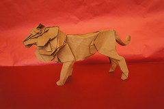 Lion - Seth Friedman (Juanfran Carrillo) Tags: seth friedman lion leon origami papel paper papiroflexia