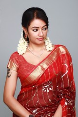 South actress Madhu Chanda Photos Set-1-Hot In Saree (4)