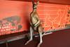 Darling Harbour - Wild Life Sydney Zoo (lukedrich_photography) Tags: australia oz commonwealth أستراليا 澳大利亚 澳大利亞 ऑस्ट्रेलिया オーストラリア 호주 австралия newsouthwales nsw canon t6i canont6i history culture sydney سيدني 悉尼 सिडनी シドニー 시드니 сидней metro city darling harbour cbd centralbusinessdistrict wildlife zoo australian animal adventure tourist site mammal marsupial kangaroo statue wood