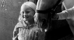 Horsey girl-Lumix GX85 (Preskon) Tags: nature person horse stable lipizzaner halter oldmillcreekil