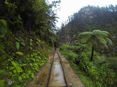 Karangahake Historical Walk-4
