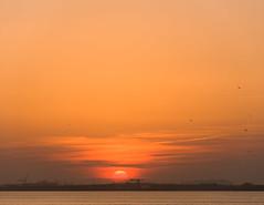 Duinkerke haven sunset-2 (Djiezes Kraaist) Tags: sunset haven port boot harbor boat vessel cargo bateau dunkerque dunkirk bulk arcelor mittal duinkerke