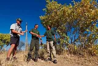 Botswana Hunting Safari 39