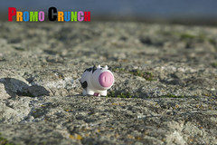 powerbankpromocrunchadspecialtyeventmarketingsalespromoti... (Photo: promo crunch promo on Flickr)