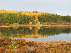 Loch kinardochy perthshire autumn colours 29-10-14 . (colinmackay485) Tags: autumn water scotland perthshire