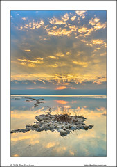 Salt Island at Sunrise (Ilan Shacham) Tags: seascape reflection vertical clouds sunrise landscape israel view fineart salt scenic formation shrub deadsea fineartphotography bokek