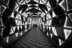 together (totomai) Tags: christmas travel autumn winter love monochrome triangles photography lights nikon couple patterns illumination tunnel fisheye relationship together blogging tokyodome phoetry japanesecouple totomai hueless nikond7000 luminoustunnel