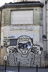 Zoo Project [11/2009] (Ruepestre) Tags: street streetart paris france graffiti 11e oberkampf zooproject