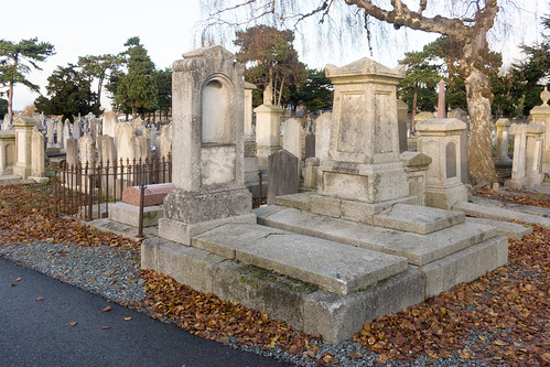 Mount Jerome Cemetery & Crematorium is situated in Harold's Cross Ref-100468