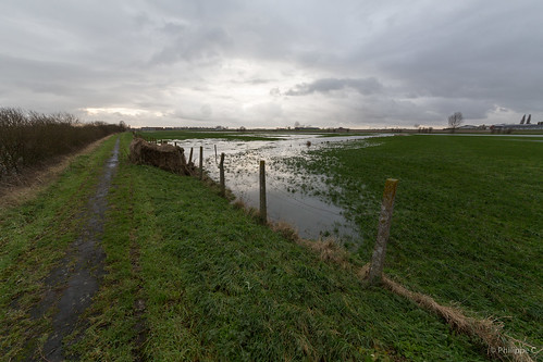 Flooded Flanders Fields