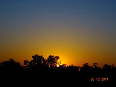 Finally ! Bought a camera ! (rick_toor) Tags: light sunset sky sun india tree nature forest photography evening flickr colours sony hobby chandigarh sukhnalake sonydschx400v lakeforestreserve ricktoor